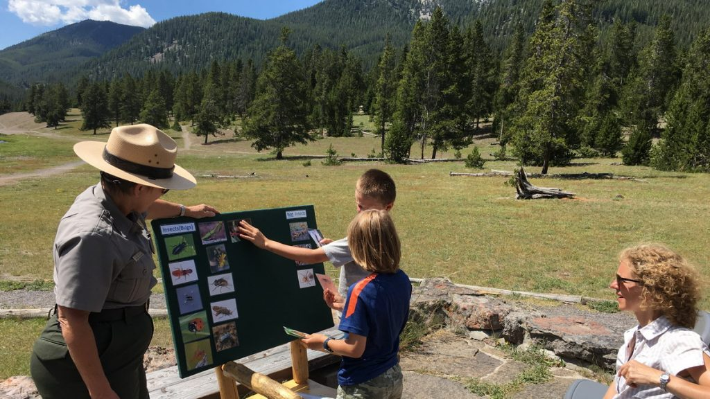 Junior ranger program in Yellowstone