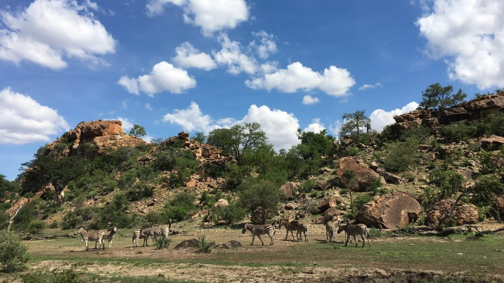 Mapungubwe national park - Itinerary for 15 days in South Africa and Swaziland