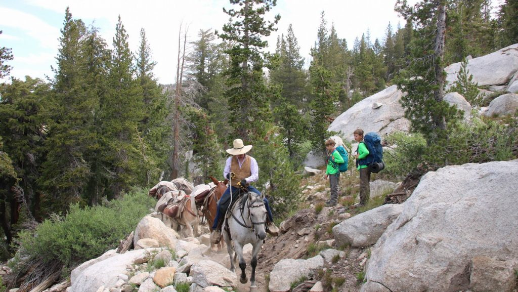Hiking the Yosemite High Country - camp supplies delivered by mule
