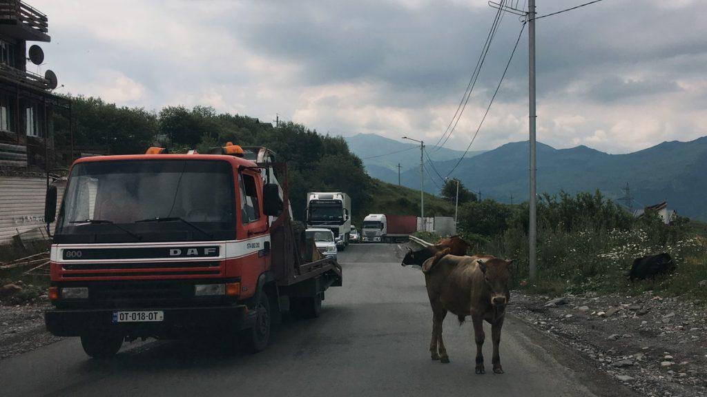 Trafic in Georgia