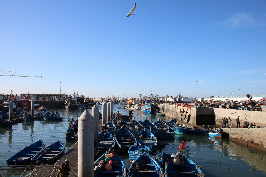 The fishing harbour of Essaouria