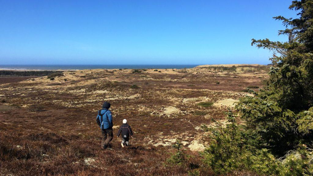 Moorlands at Troldsting