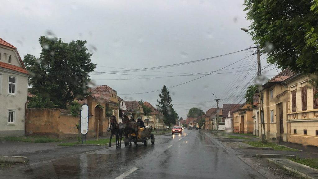 Horse carriage in the rain